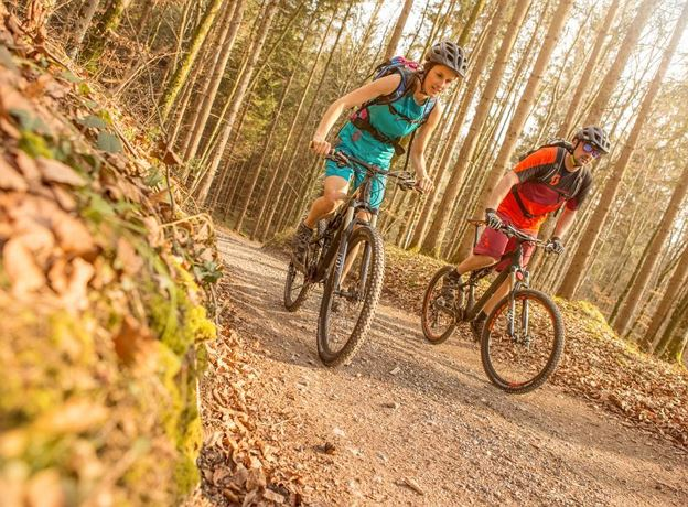 guided mountainbiketour - Loischkopf**