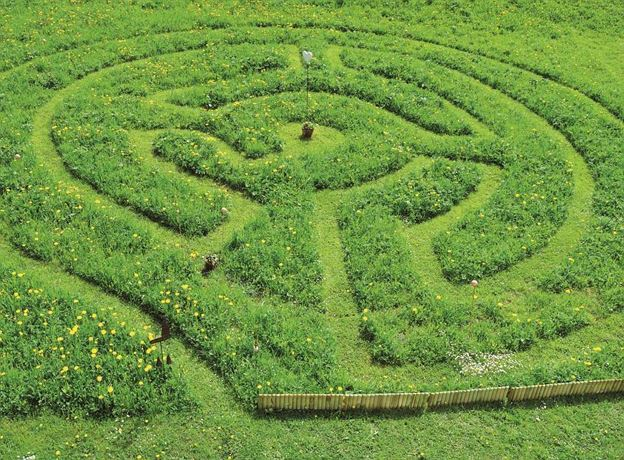 Alpine Herb Maze - guided tour
