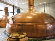 Guided tour  'Fohrenburg' brewery
