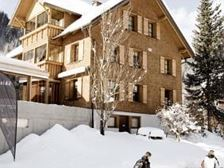 Winter Haus Arnika