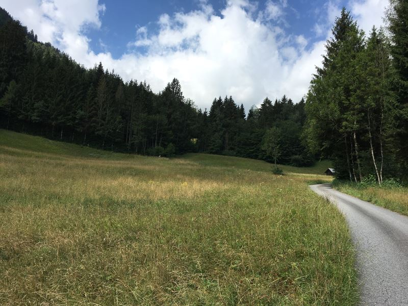 Single Trail Muttersberg (Bludenz) - Aktuelle - TripAdvisor