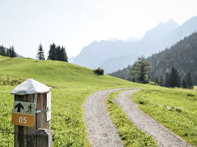 Guided hikes in Brandnertal