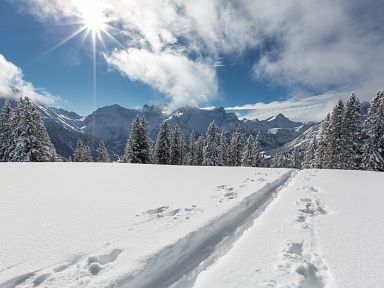 Ski Touring in the Alpenregion Vorarlberg