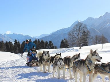Dog sled tours in Bürserberg