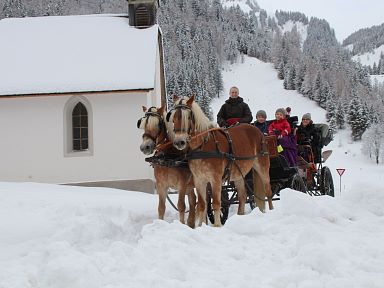 Winter horse drawn sleigh in Brand