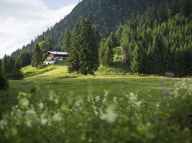Popular destinations in the Alpenstadt Bludenz