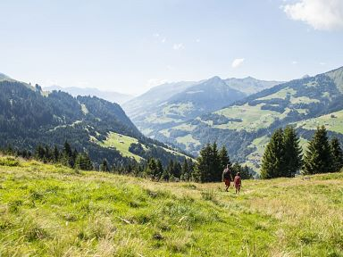 Long Hikes in the Biosphere Park Großes Walsertal