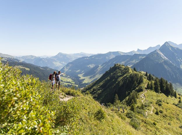 Summer in the Alpenregion Bludenz