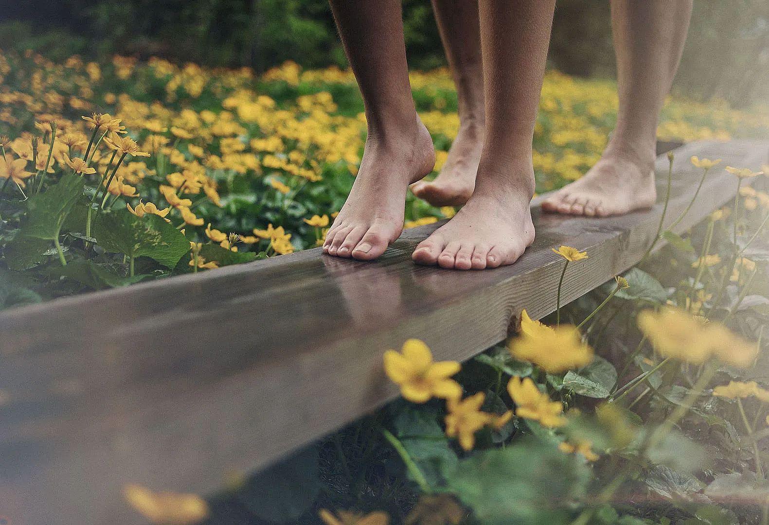 Barefoot Path Brand in Brandnertal